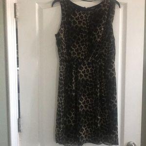 Leopard dress. Size 8.